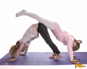 What is yoga - Partner Yoga Pose
